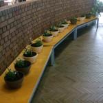 H22.10.23園芸教室-blog 036